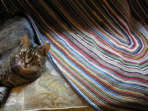 Piwa Crochet Wool Rug