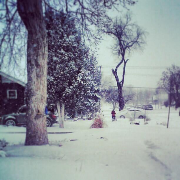 Denver #snow