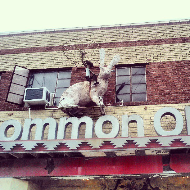 Uncommon objects #austin #kellydoesaustin