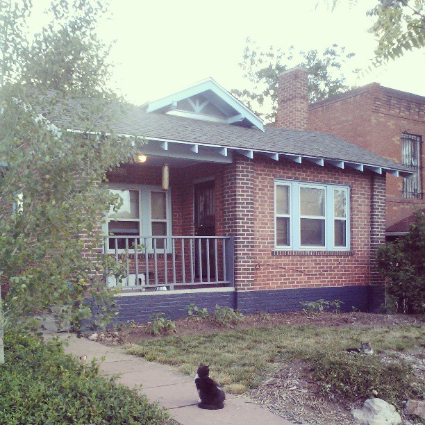 Painted brick before sunflowers grew #diy #house