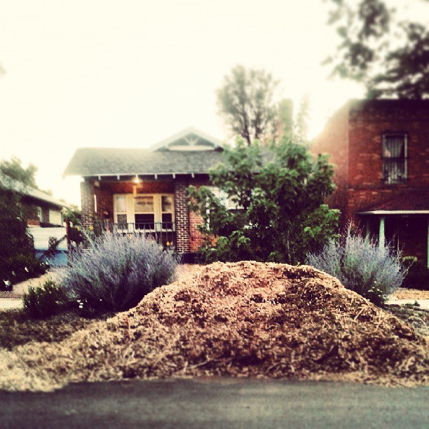 End of day two #mulch #mykneehurts #denver
