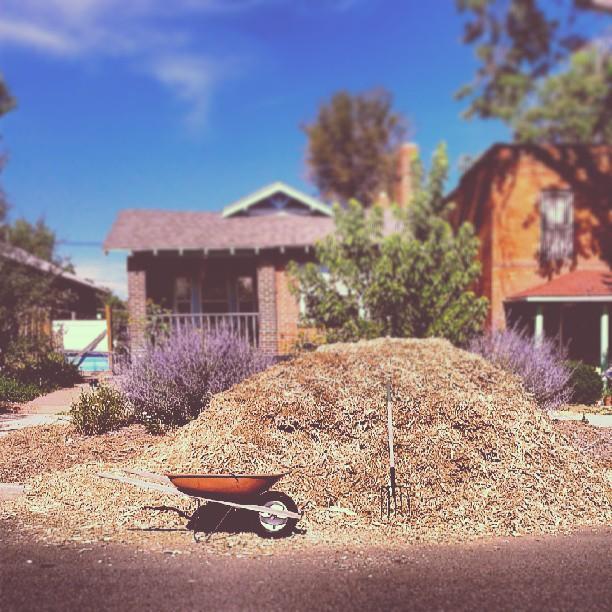We're going to need a bigger boat #wheelbarrow #mulch #alpinetreeservice #denver #garden