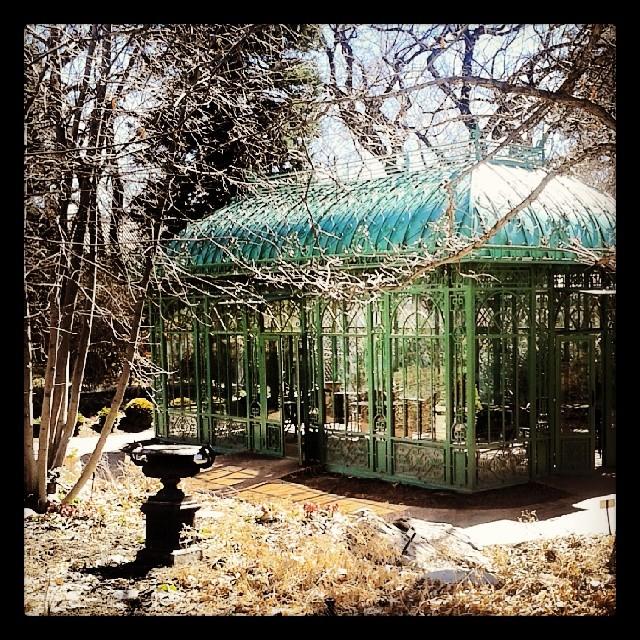 Disney greenhouse #Denver #botanicgardens #garden