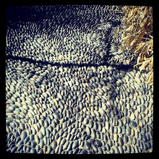 Pebble walk detail #Denver #botanicgardens #path
