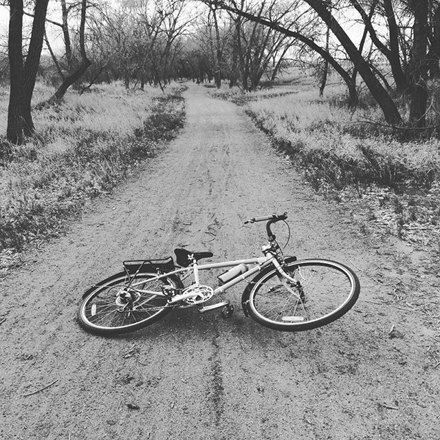 Meditation #bemoremike #surly #surlylht #qom #strava #vegan #bikelife