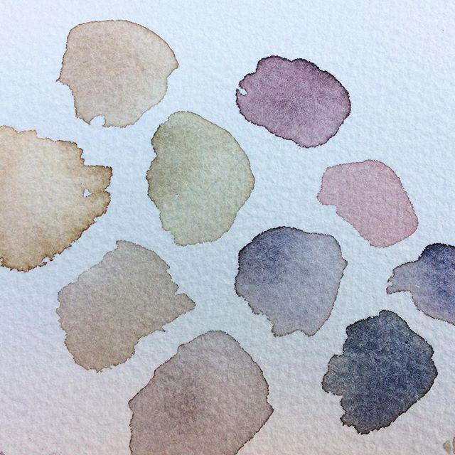 New color palette #watercolor #swatches #summitridgestudio